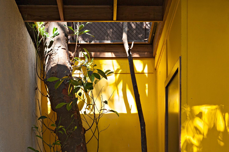 AJA_Pavilion_13.jpg