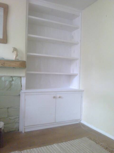 Steve Green bookcase unit.JPG