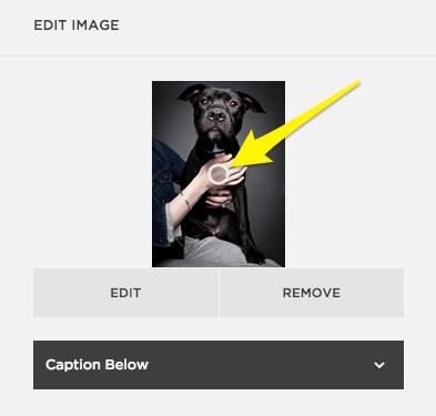 Setting an image's 'focal point' in Squarespace