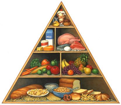 diet-guide-triangle.jpg
