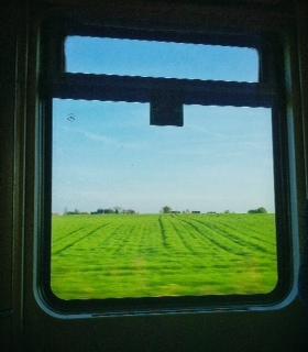 Train view.JPG