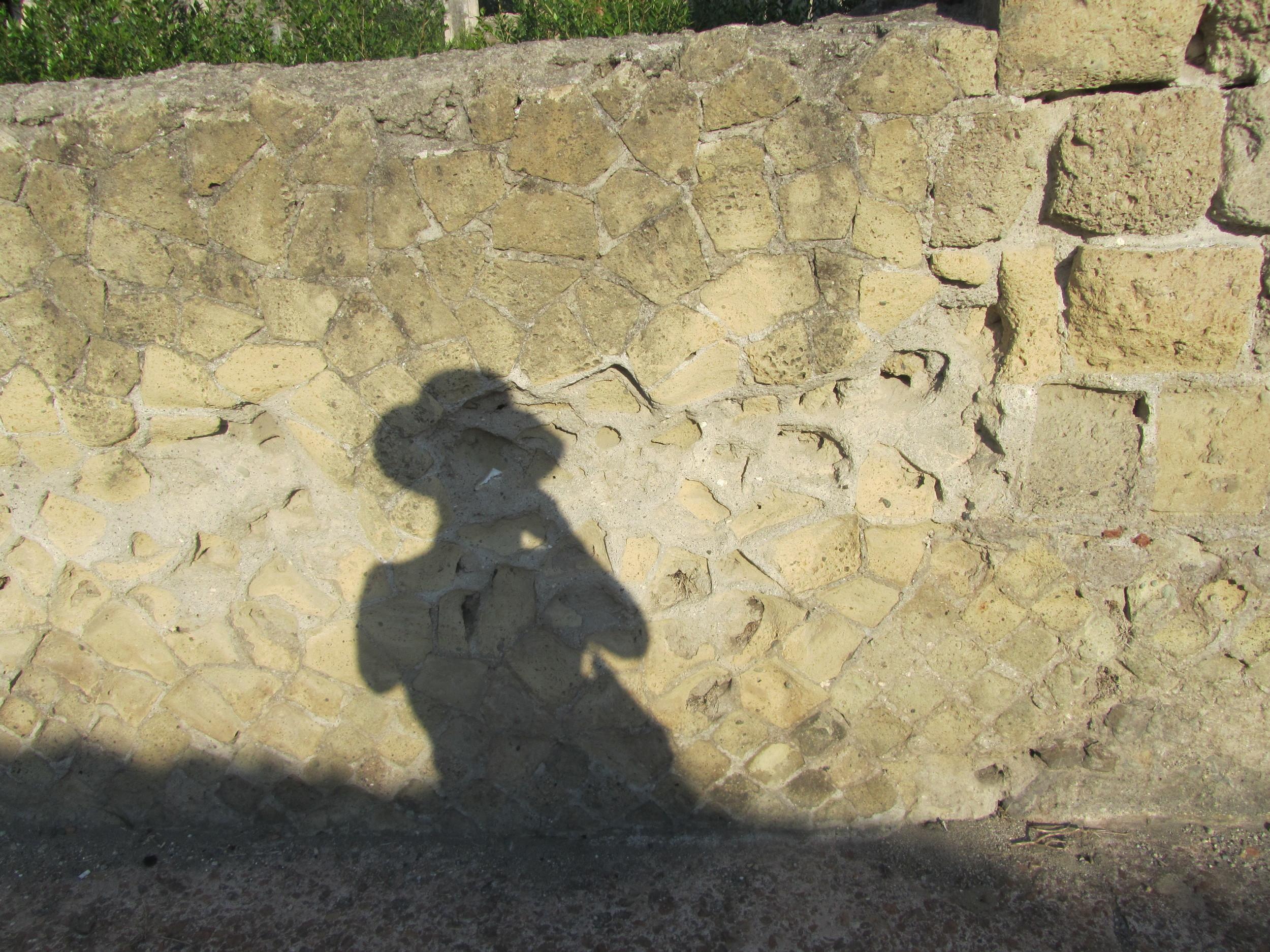 E-Luxe KC shadow pic.JPG