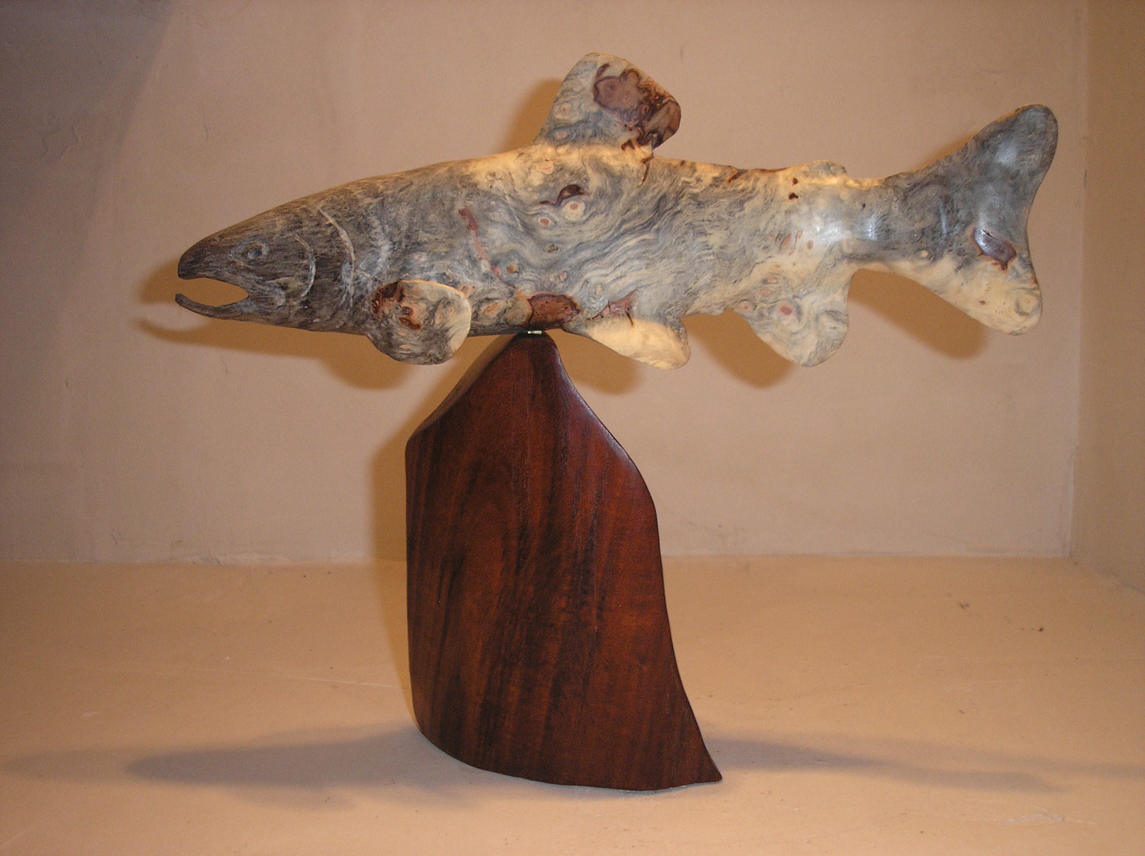 Buckeye Trout 1A.JPG