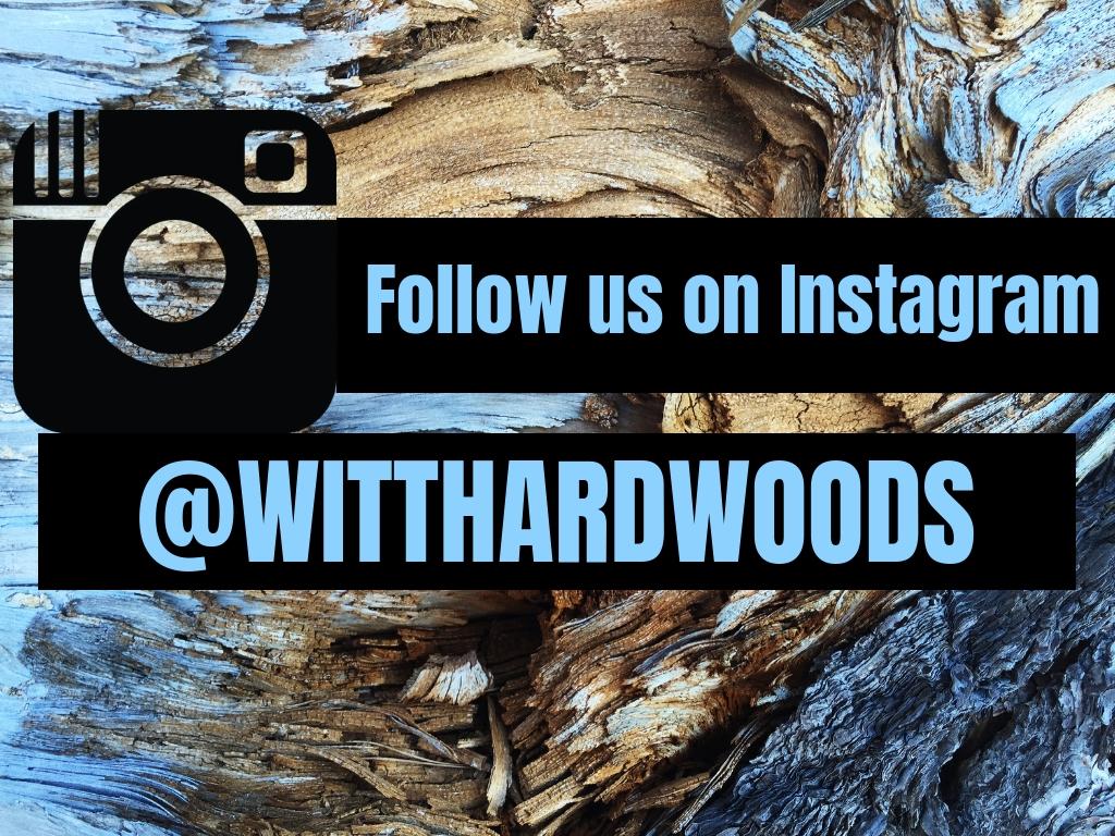 instagram(1).jpg