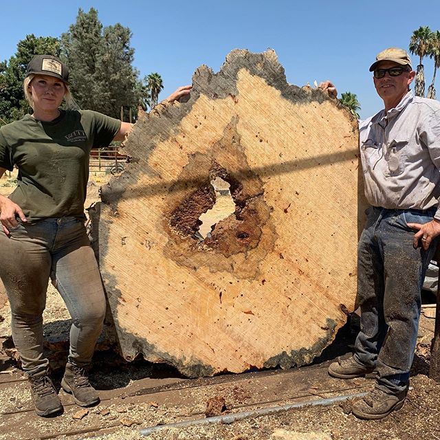 🌳 One of the best things about our business is being able to work side by side with our family. Sure, there can be some cussing and fussing, but overall it's the most productive, rewarding, and beautiful working environment. ⚡️This slab was cut from Big Bertha. 🌳 #witthardwoods #buckeyeburl #woodslabs