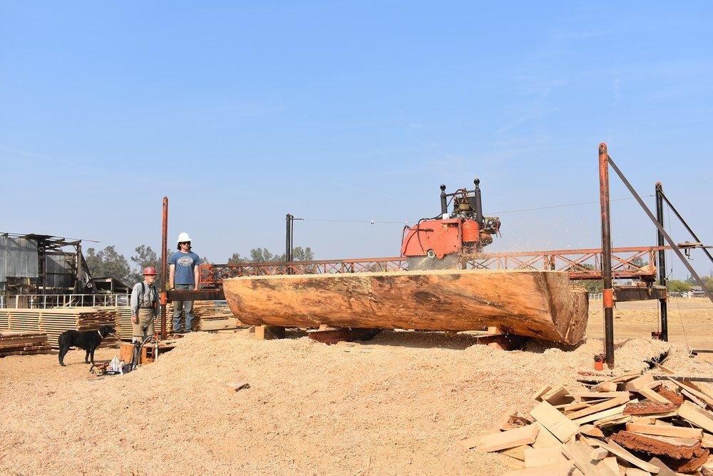 Sawmill1 (1).jpg