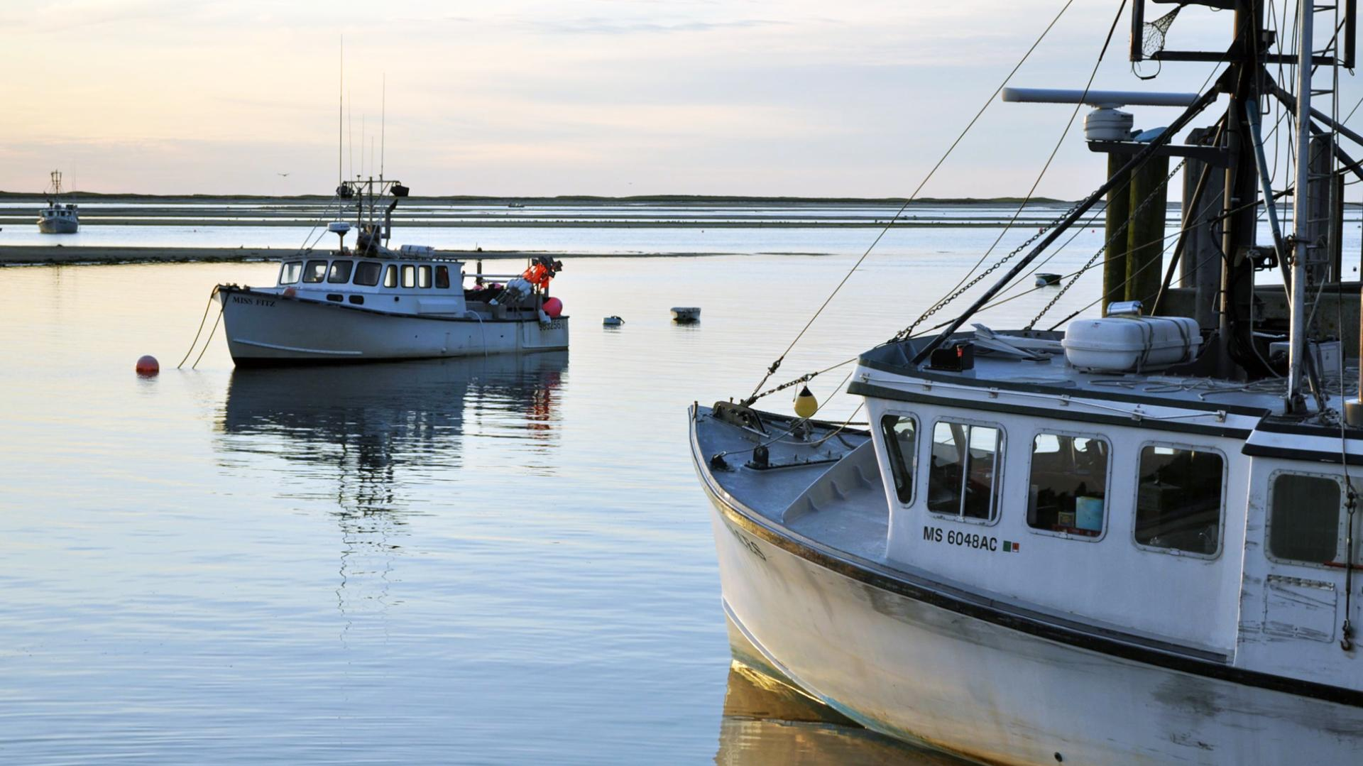 Obama's Marine Monument Could Spell Disaster for New England Fishermen  (MUNCHIES,SEP 19 2016)