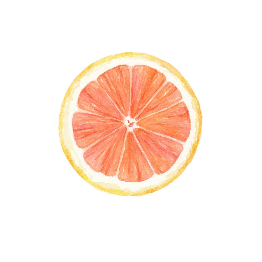 Cara Cara Orange Cross Section