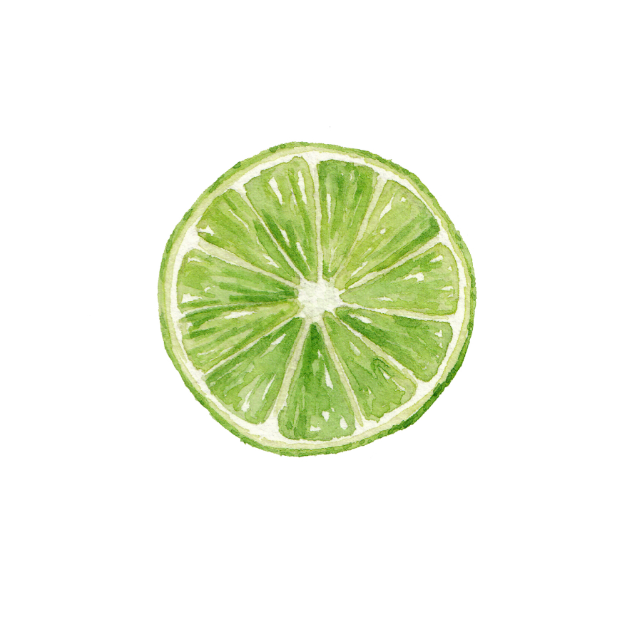 Lime Cross Section