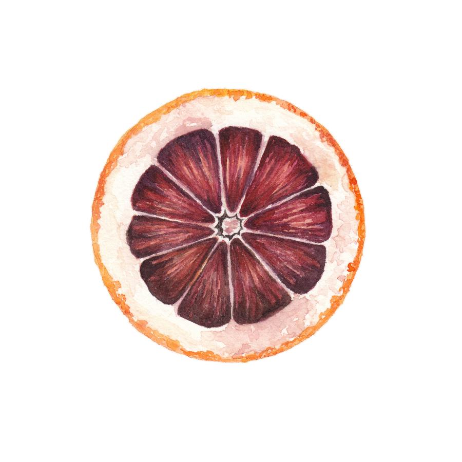 Blood Orange Cross Section