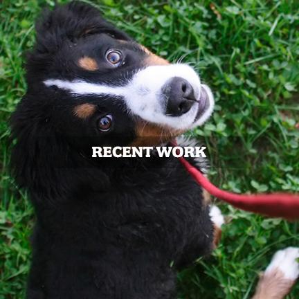 recentwork_4.jpg