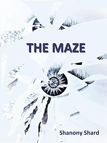 The Maze.jpg