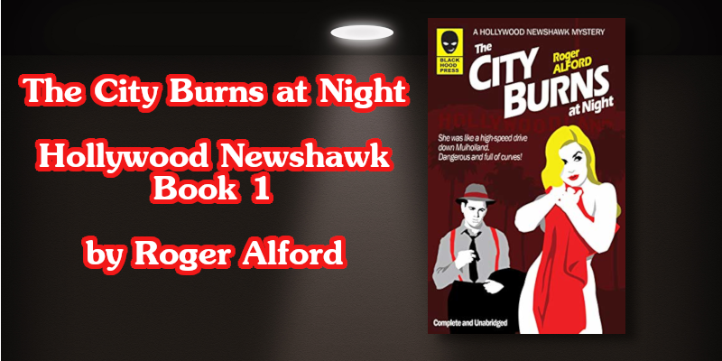 The City Burns at Night New Twitter Book Cover 800x400.png