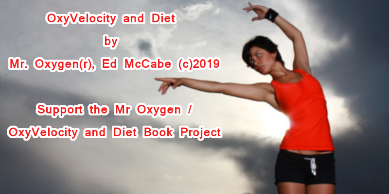 Oxygen Velocity Book Project New Twitter Book Cover 800x400.png