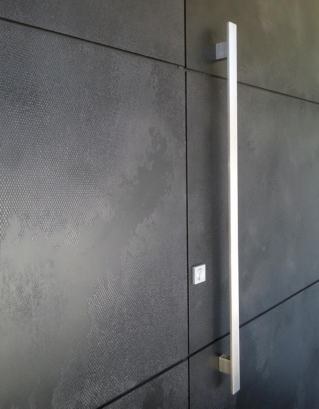 black viper door.jpg