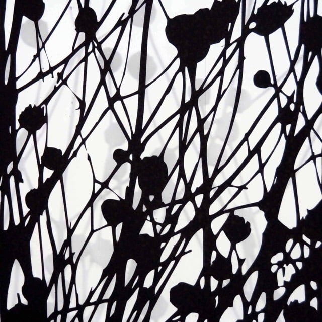 Axolotl_Poppies.JPG