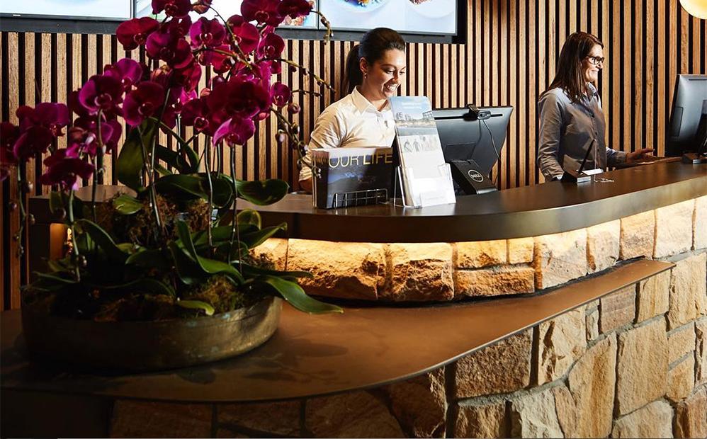 Axolotl_HarbordDiggers_Brass_Brown_Florentine_Counter.jpg