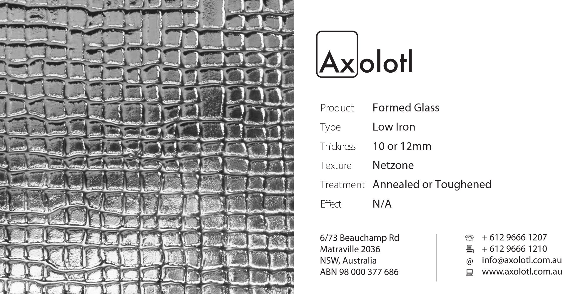Axolotl_Net_Formed_Glass.jpg
