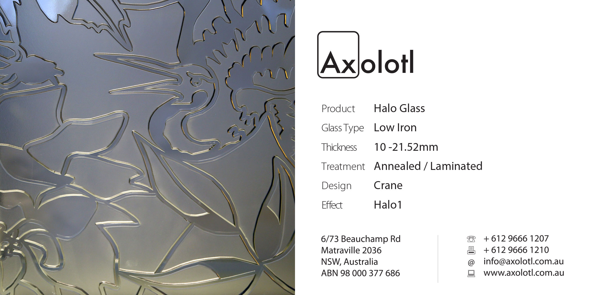 Axolotl_Halo_Crane.jpg