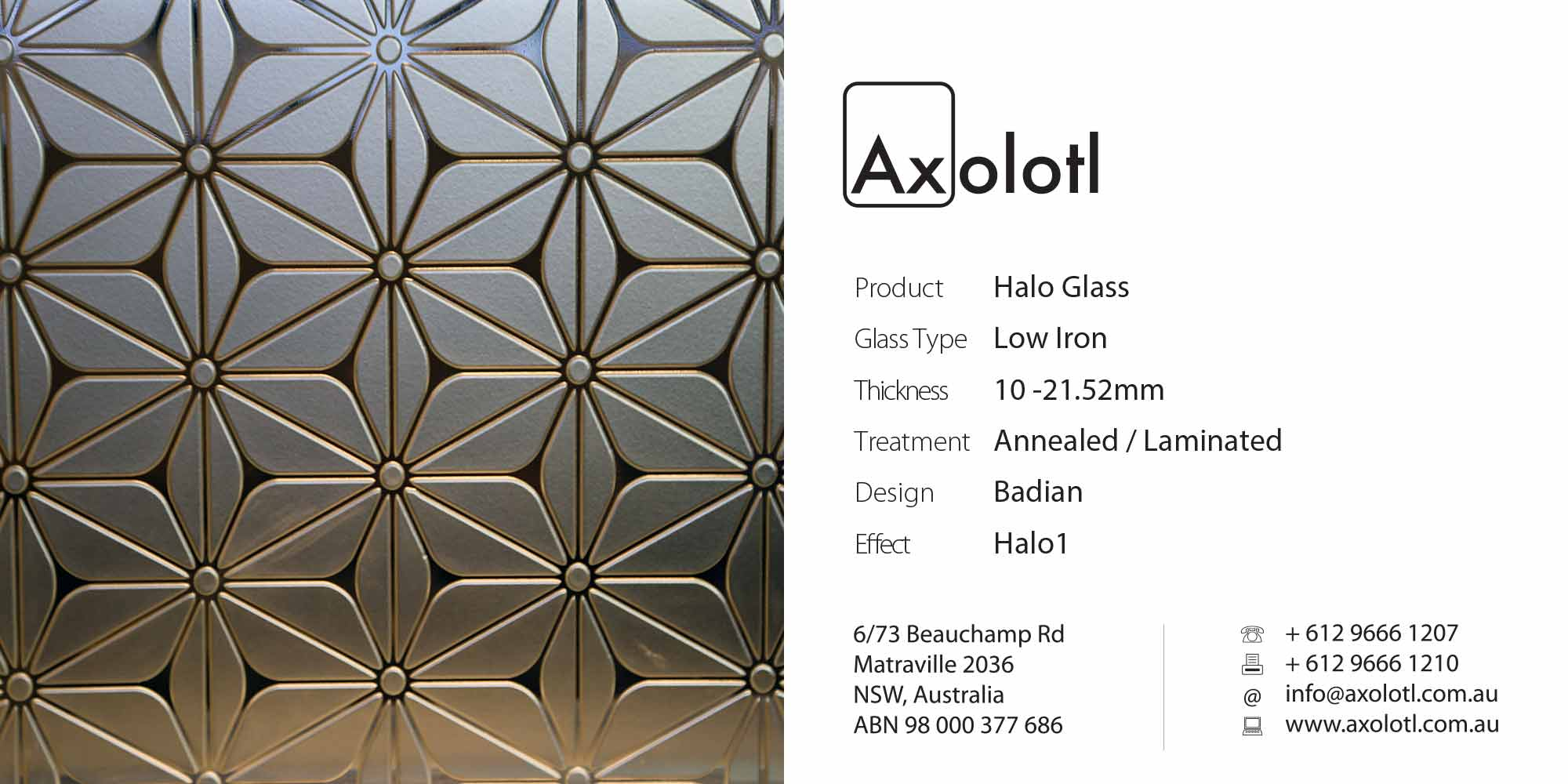 Axolotl_Halo_Badian.jpg