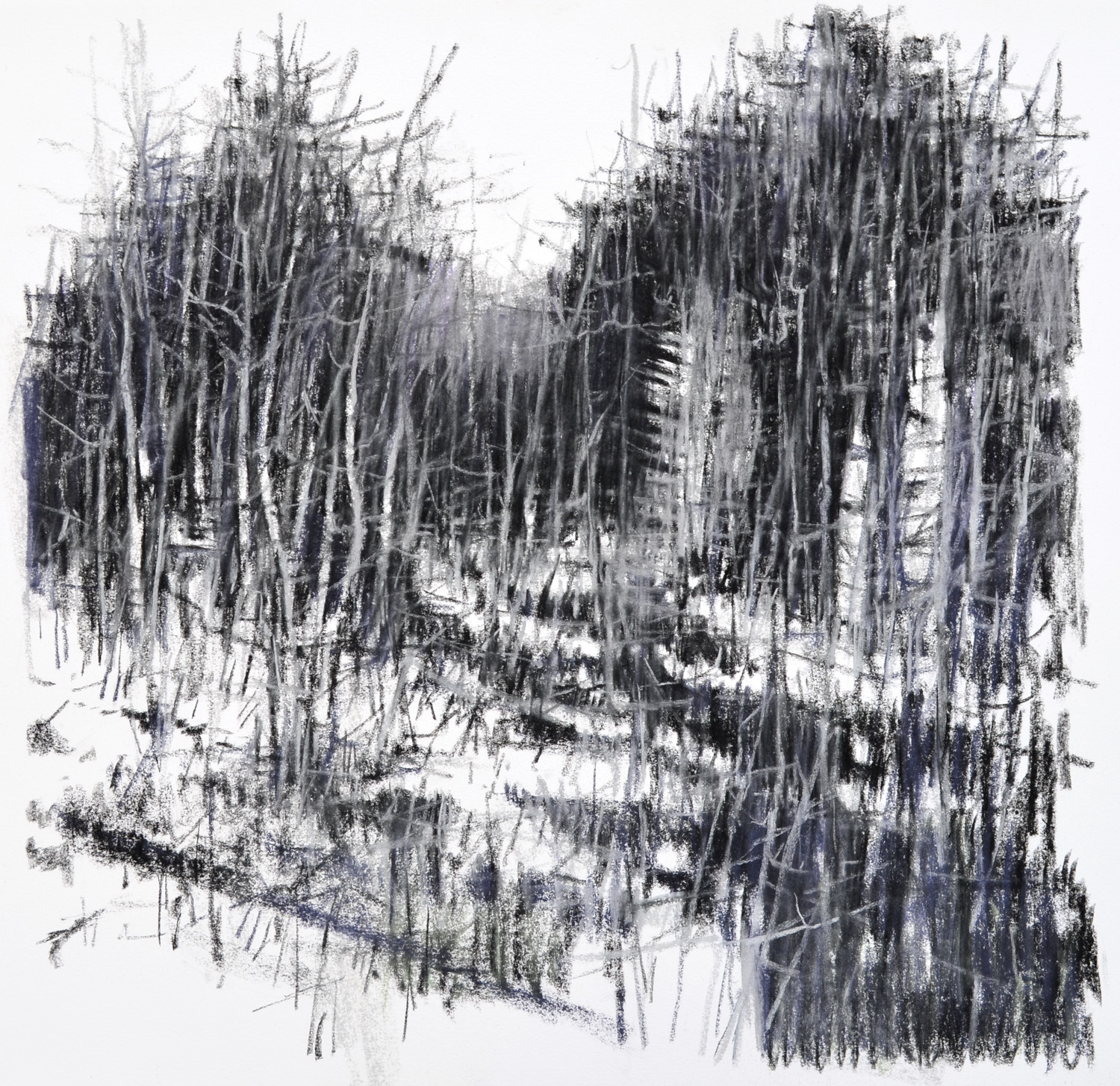 "Winter Creek Bed,   William Chickillo, 20"" x 20"" charcoal drawing"
