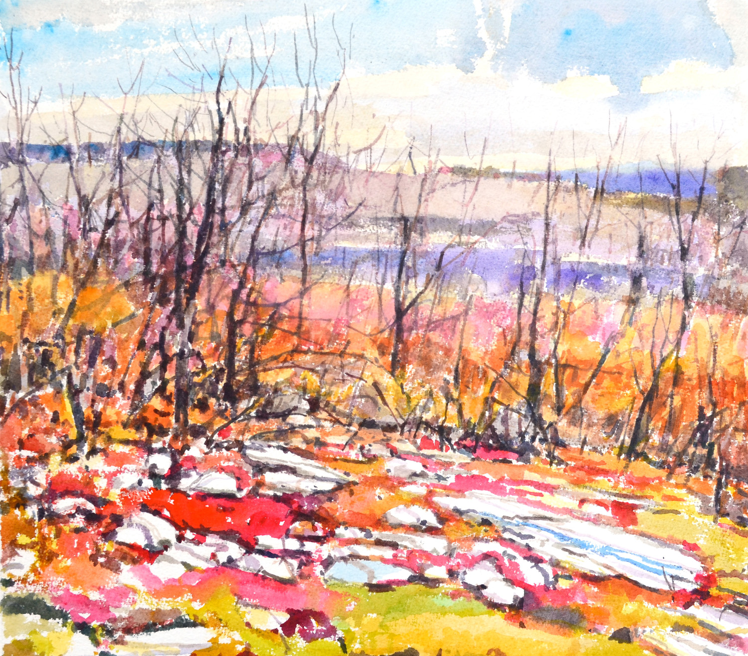 "Blueberry Fields, Archbald Mountain,   William Chickillo, 15"" x 17"" watercolor"