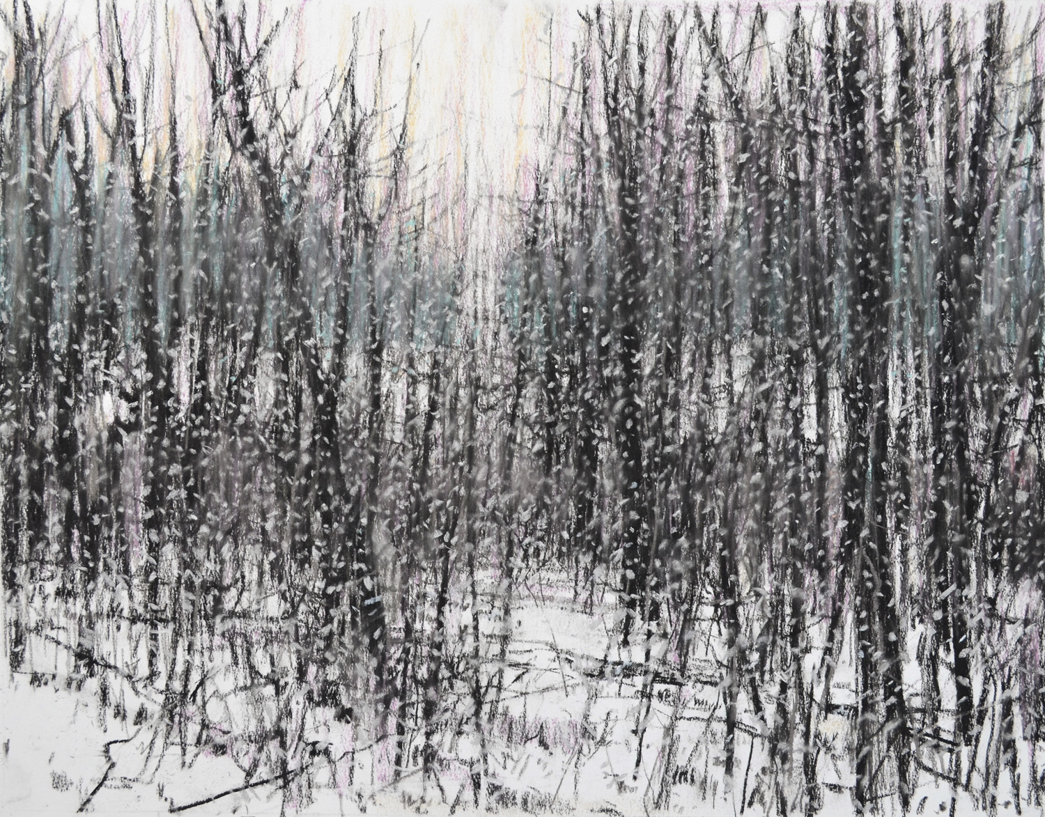 "Squall at State Park, William Chickillo, 19 1/2"" x 25"" charcoal and pastel"