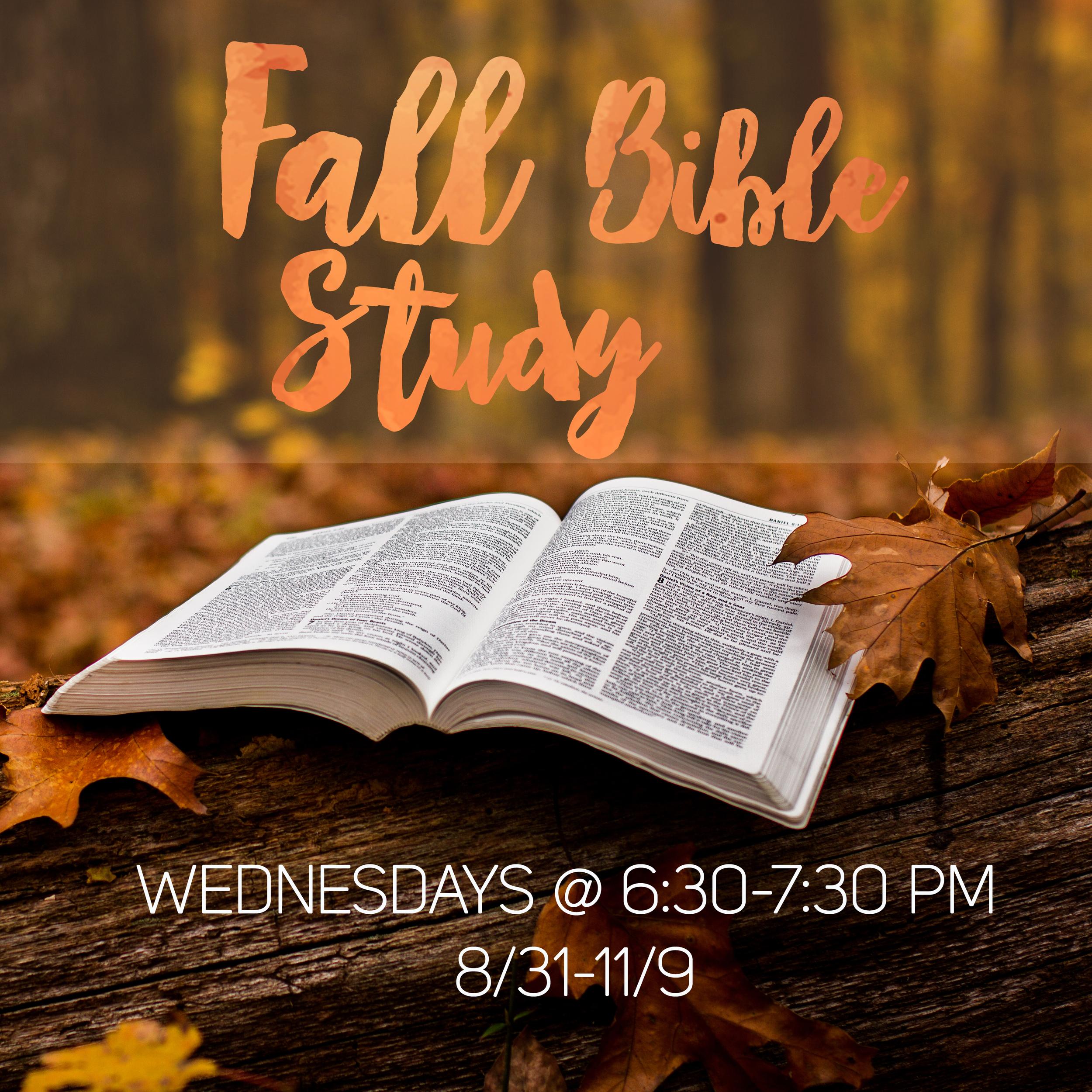forest hills baptist church raleigh fall bible study
