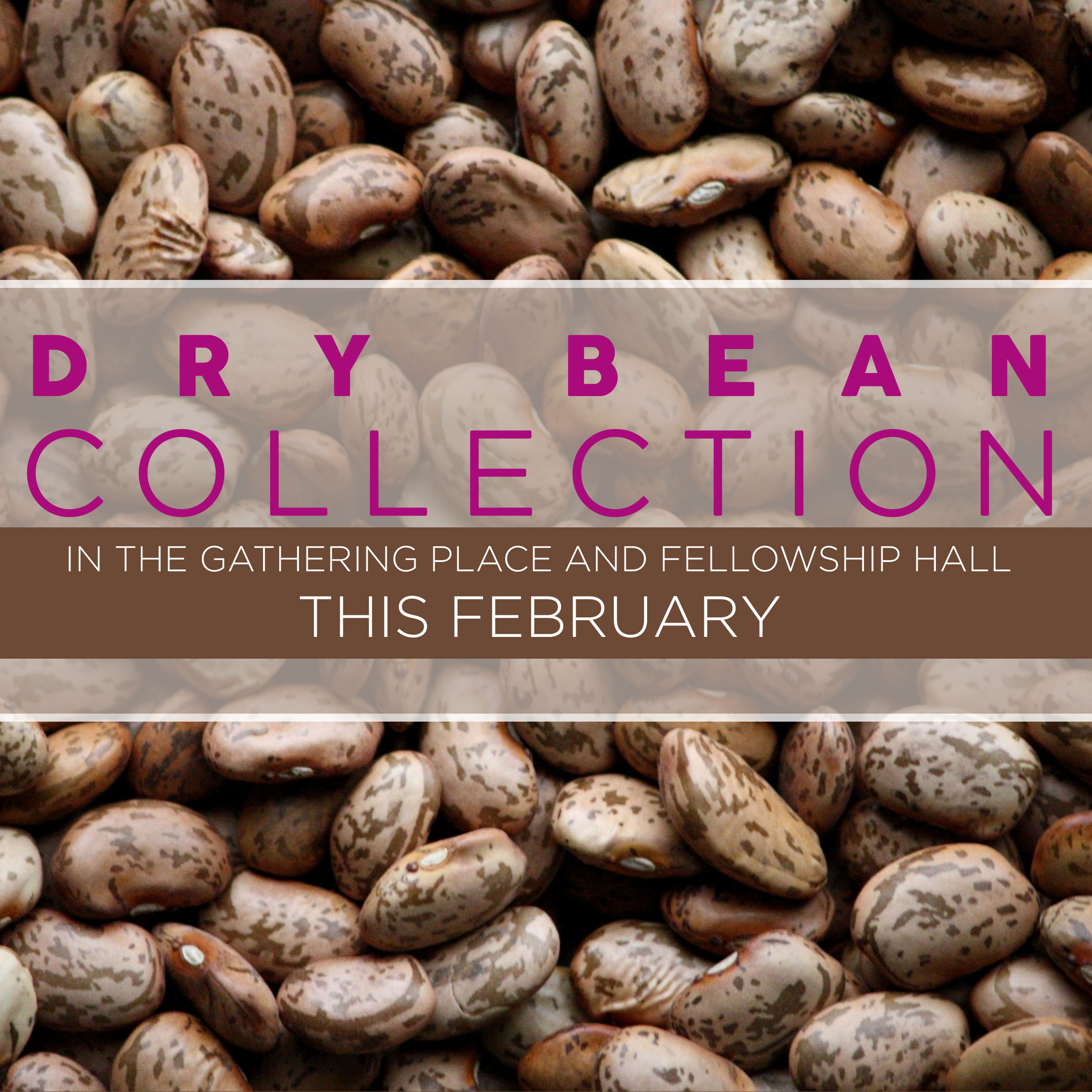 To help support the children of the Congo, who usually eat only every other day, we're going to be collecting dry beans to send to them throughout the month of February. Any type of dry beans is acceptable and you can bring your beans to the boxes that'll be set out in the Gathering Place and the Fellowship Hall. This collection is sponsored by Children's Essentials and Women on Mission.
