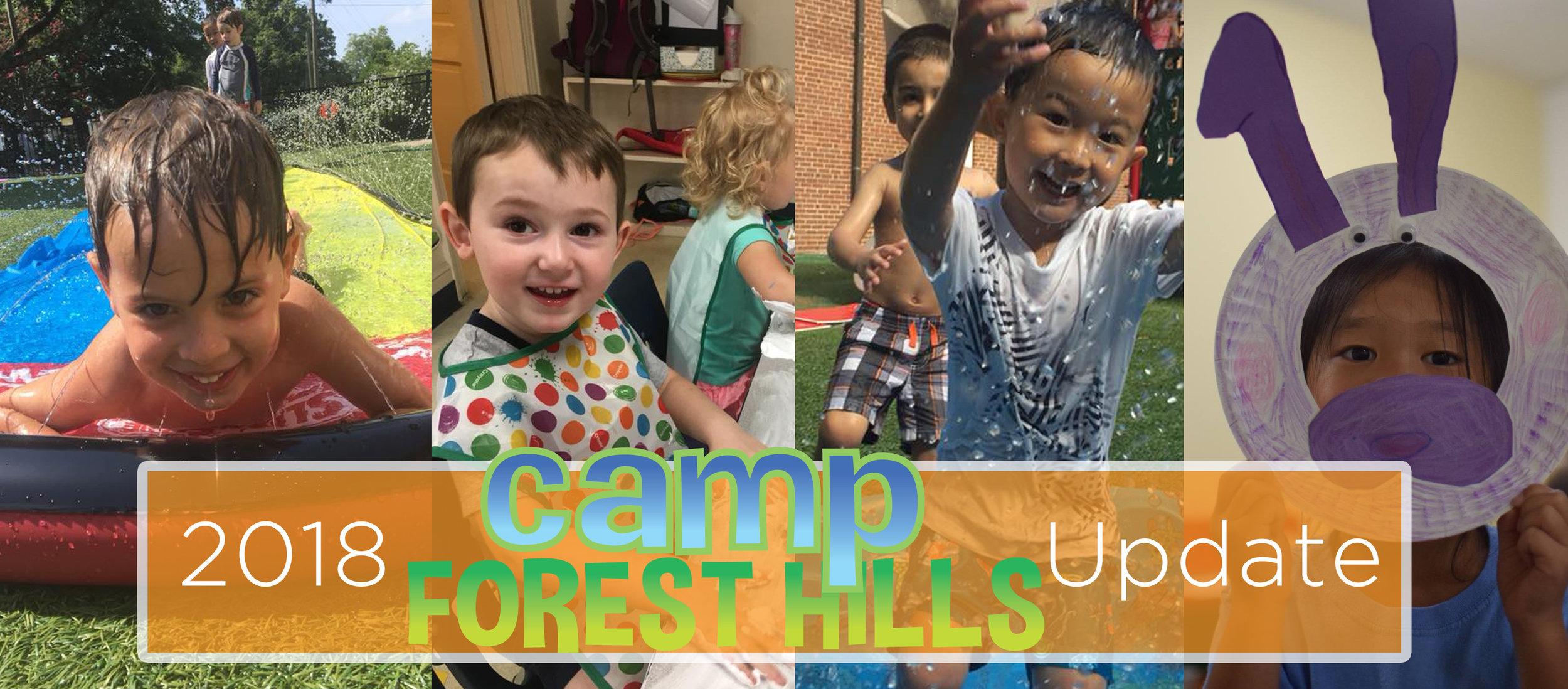 campforesthillsupdate.jpg