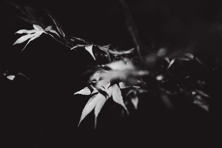 eric-yerke-2012_017.jpg