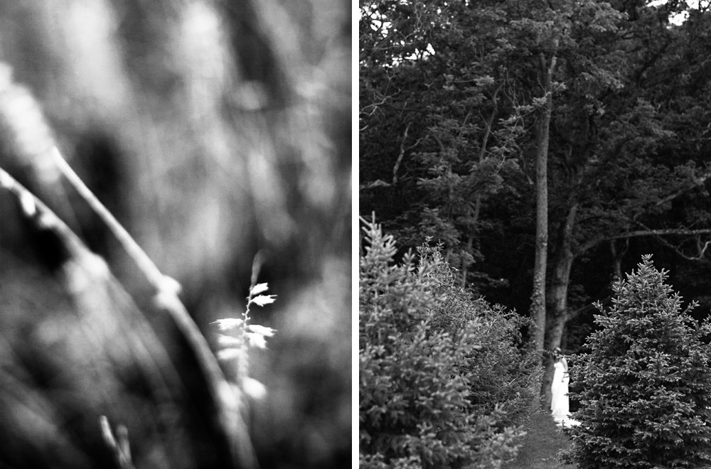 Eric-Yerke-Photography-2013-047.jpg