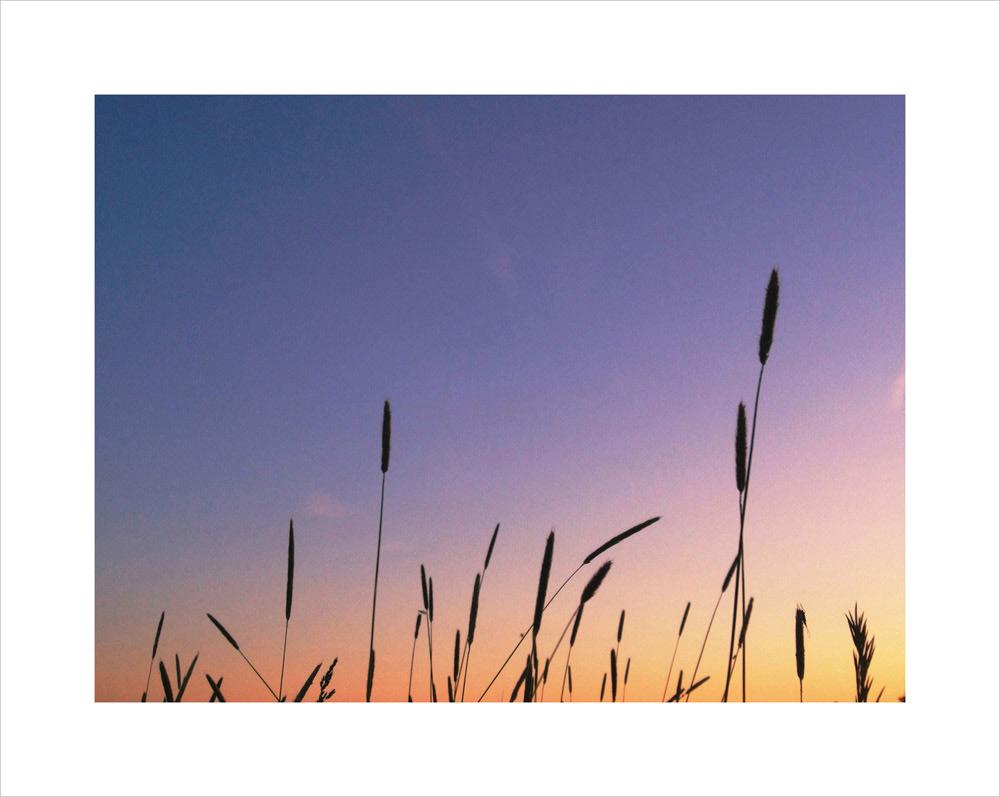 Eric-Yerke-Photography-2013-151.jpg