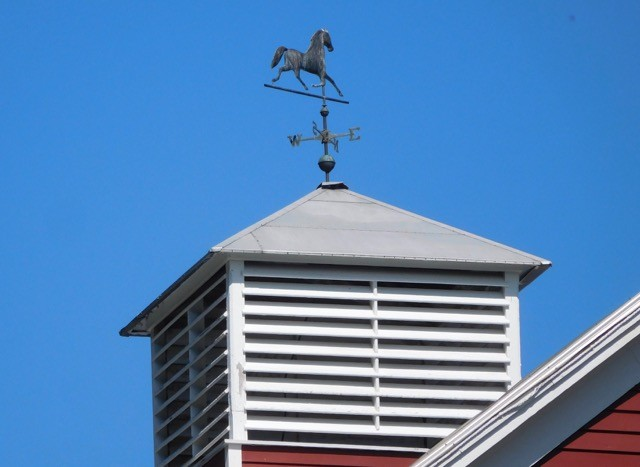 A weathervane on Clough Hill Road in Lyman, New Hampshire is telling us the wind is out of the northeast. (photo courtesy Cary Clark/LAHS)