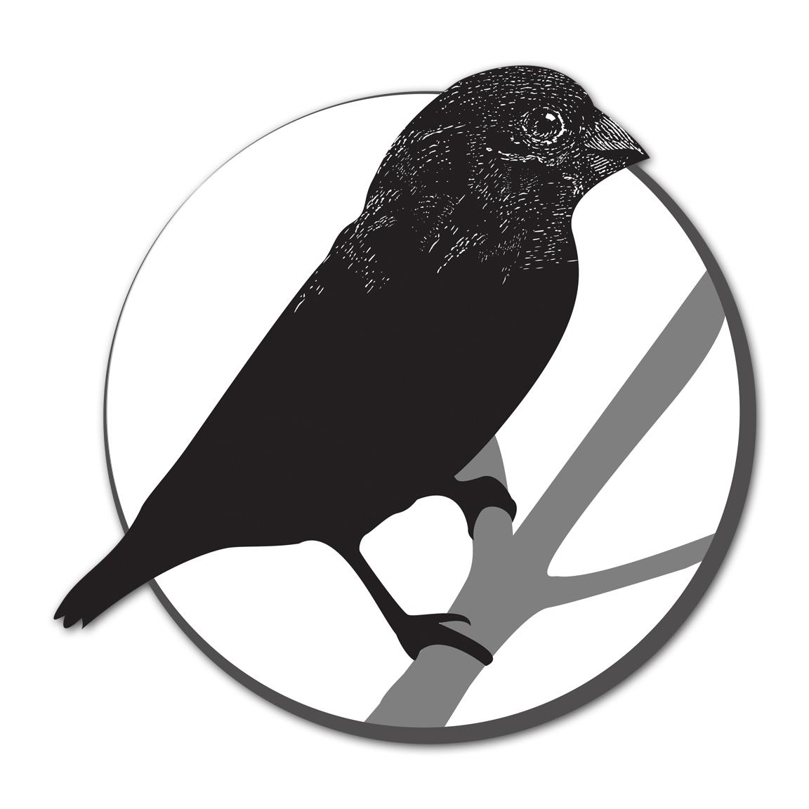 BioBird_web.jpg