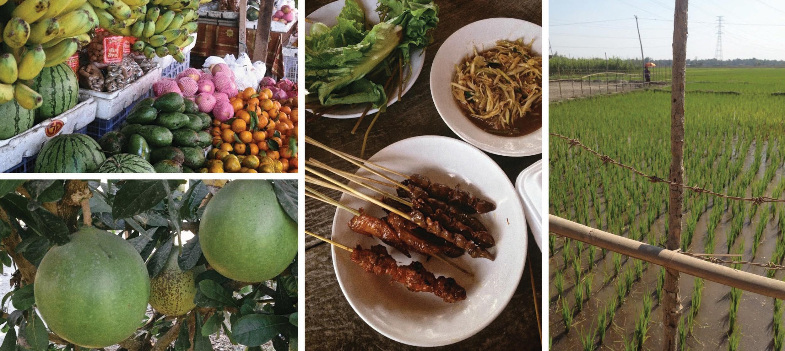 Laos VI.jpg