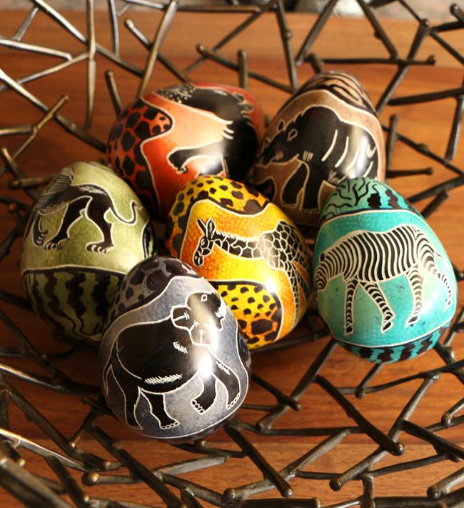 Animal egg.jpg