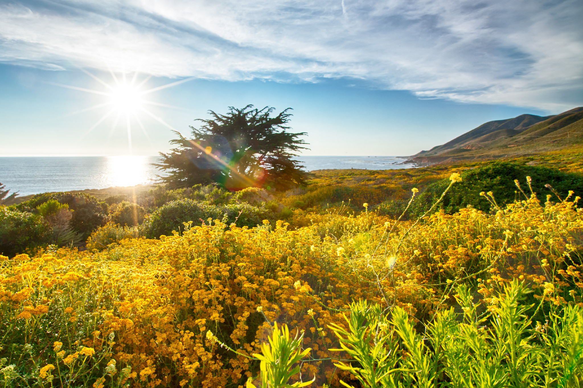 FabioBoscoPhotography_Spectacular view of the California coast along route 1-2.jpg