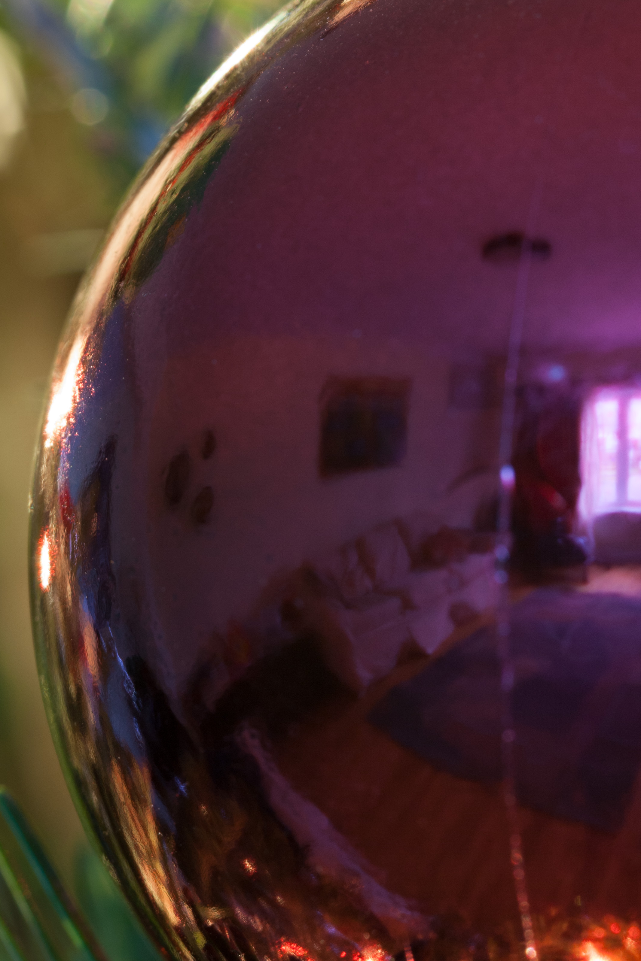 Reflected Living Room. The Xmas tree will come back at the end of the year.