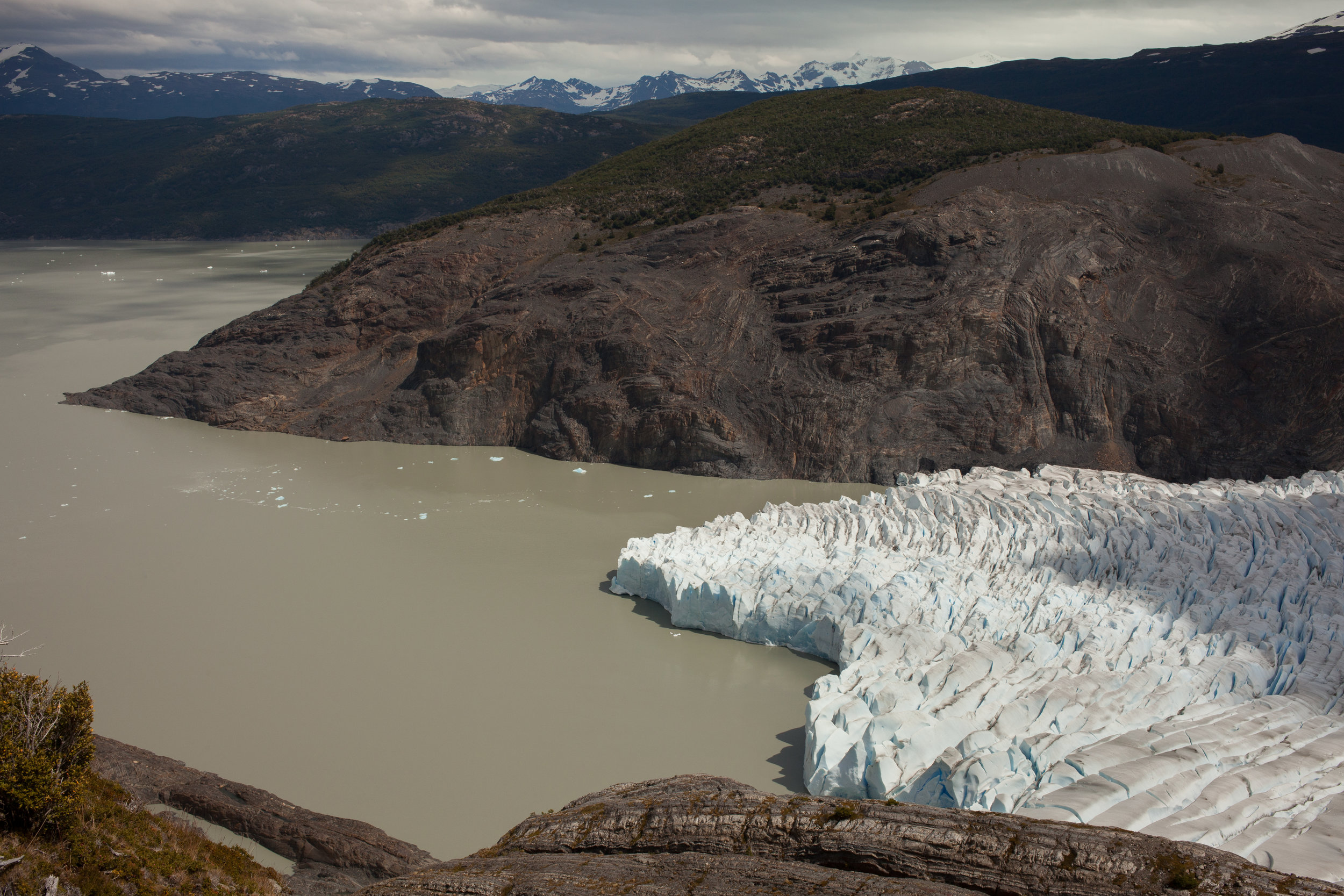 Grey Glacier is 100 feet thick and in some places several kilometers wide.   According to a fellow hiker, Grey Glacier has recited dramatically in the past few years since his last visit.