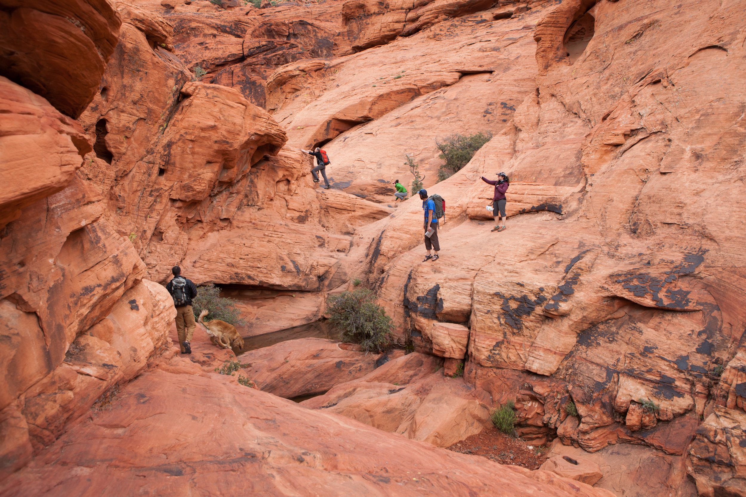 Climbers navigate a small channel through the rock at the Red Rock Canyon National Conservation Area in Nevada.