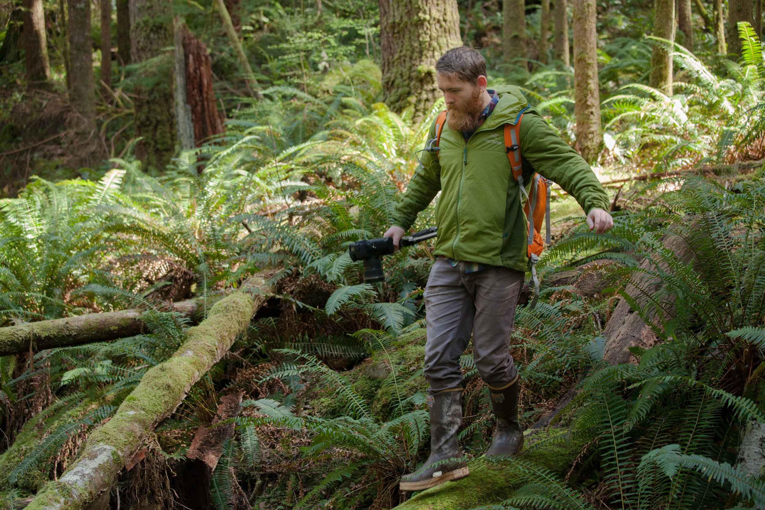 Adam Andis explores the lush ecosystem during a photography outing at  Olympic National Forest, Washington.