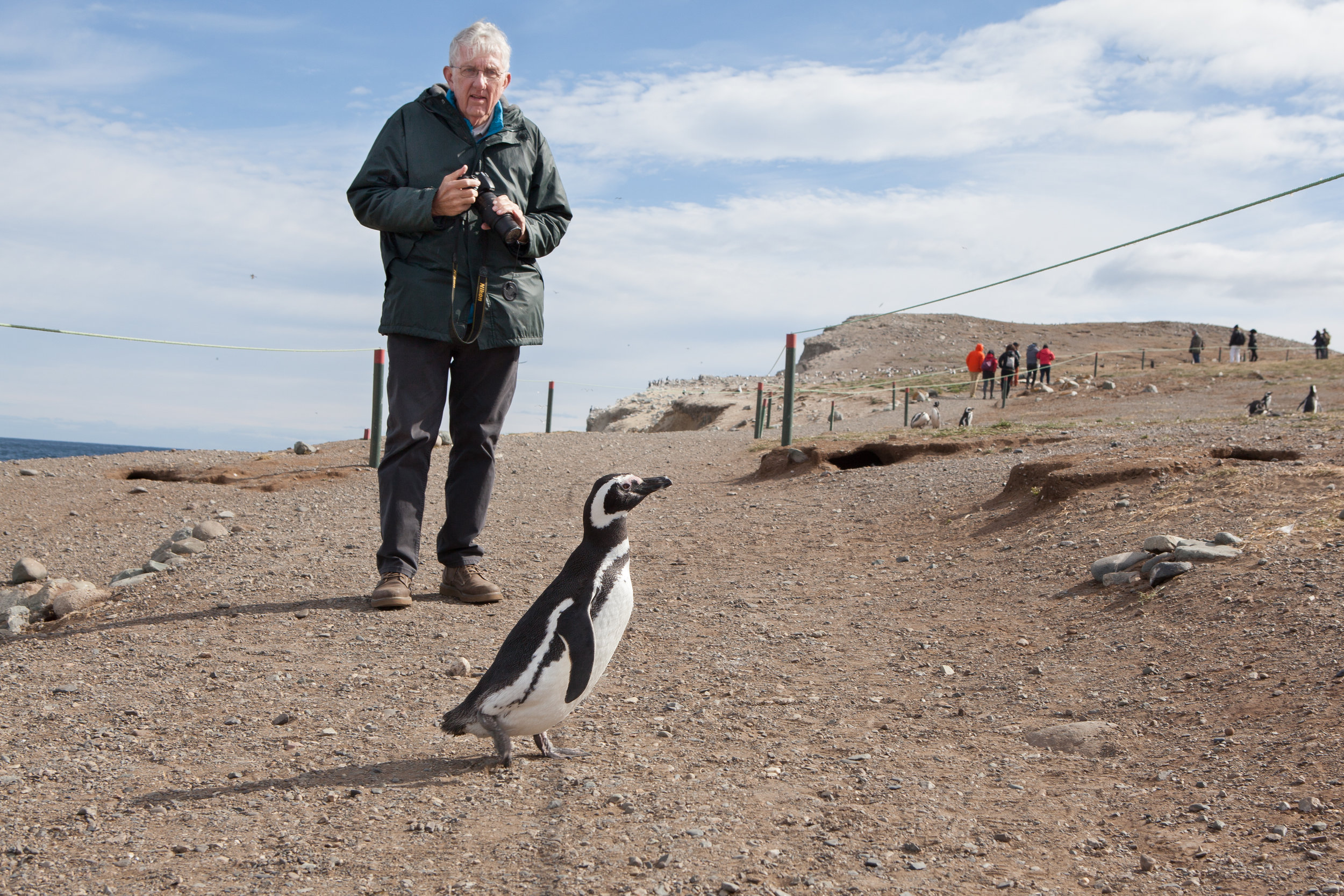 While visiting Magdalena Island in Chile, I noticed a little penguin crossing the road. The gentleman I photographed was in absolute awe as he put down his camera to experience this moment. After I photographed him, he just looked up at me and smiled.