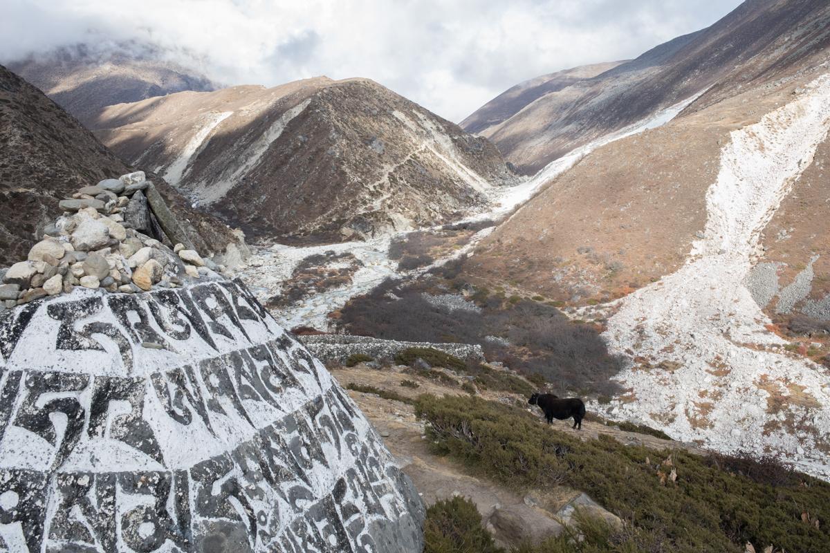Imja Khola river valley. Everest Basecamp Trek, Nepal.