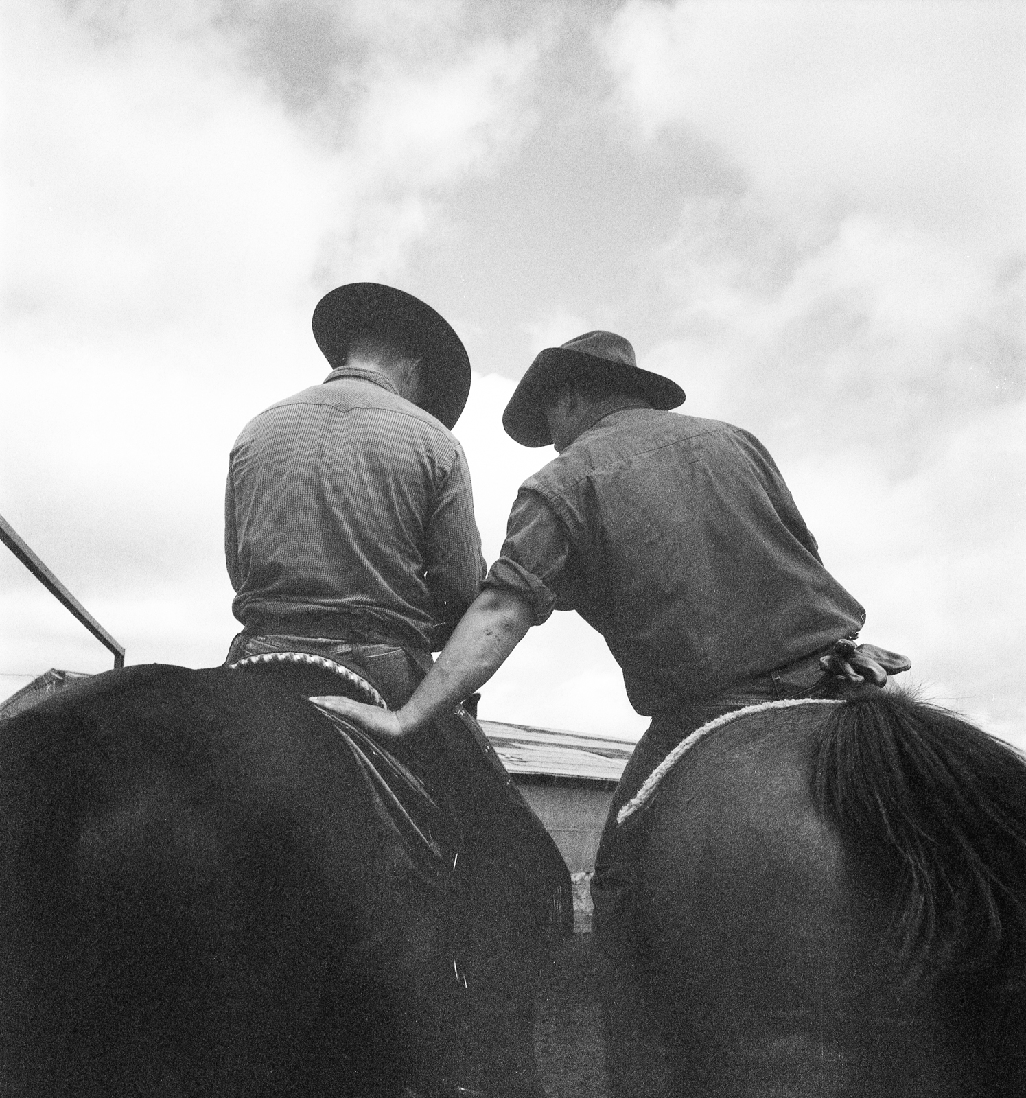 Tyrel Messer and Shane Elkins, Beaver Creek Ranch, 2011.   (Color film converted to B&W.)