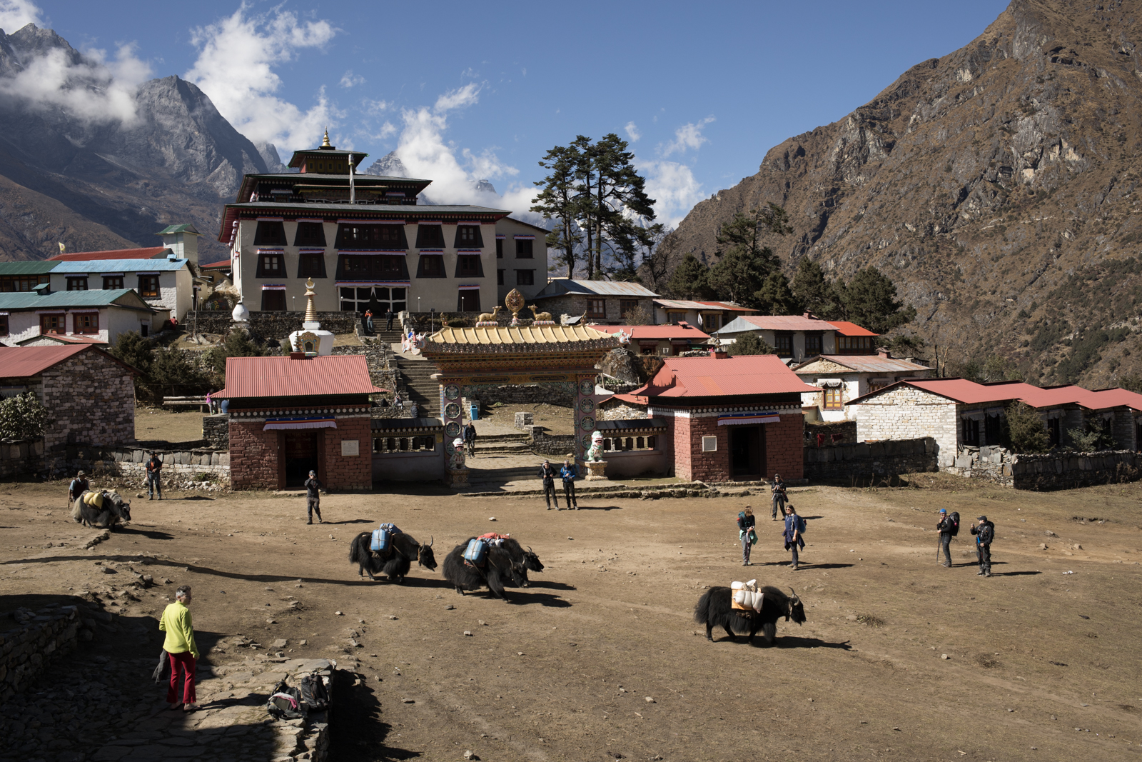 As we hiked higher in elevation, the pack animals changed from the cow-yak hybrid Dzo, to yaks.  A group of yak carry supplies through the Tengboche village in front of the renovated Tengboche Monistary.