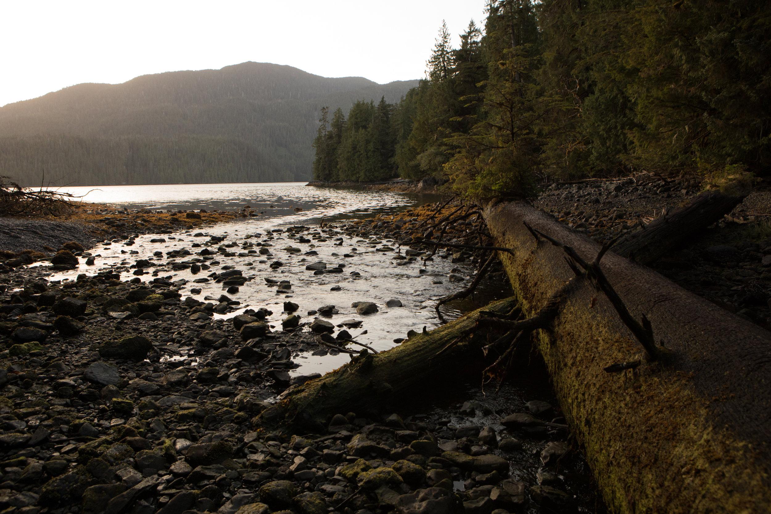 River mouth at low tide, Klakas Inlet
