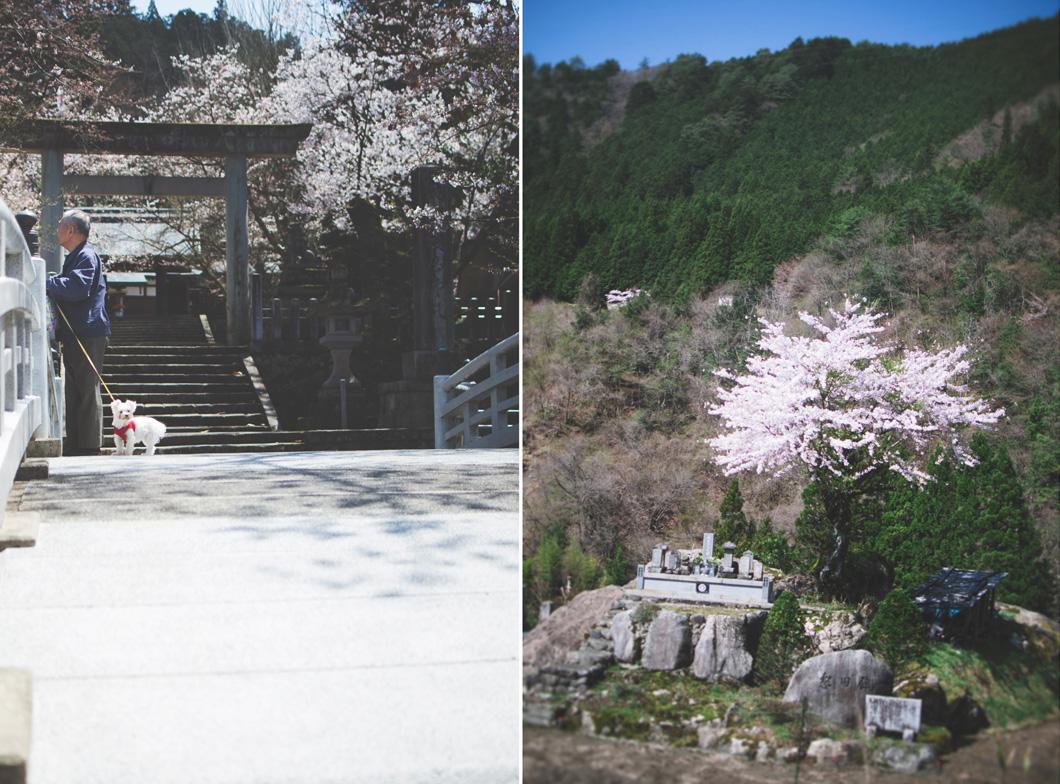 japanblog-45.jpg
