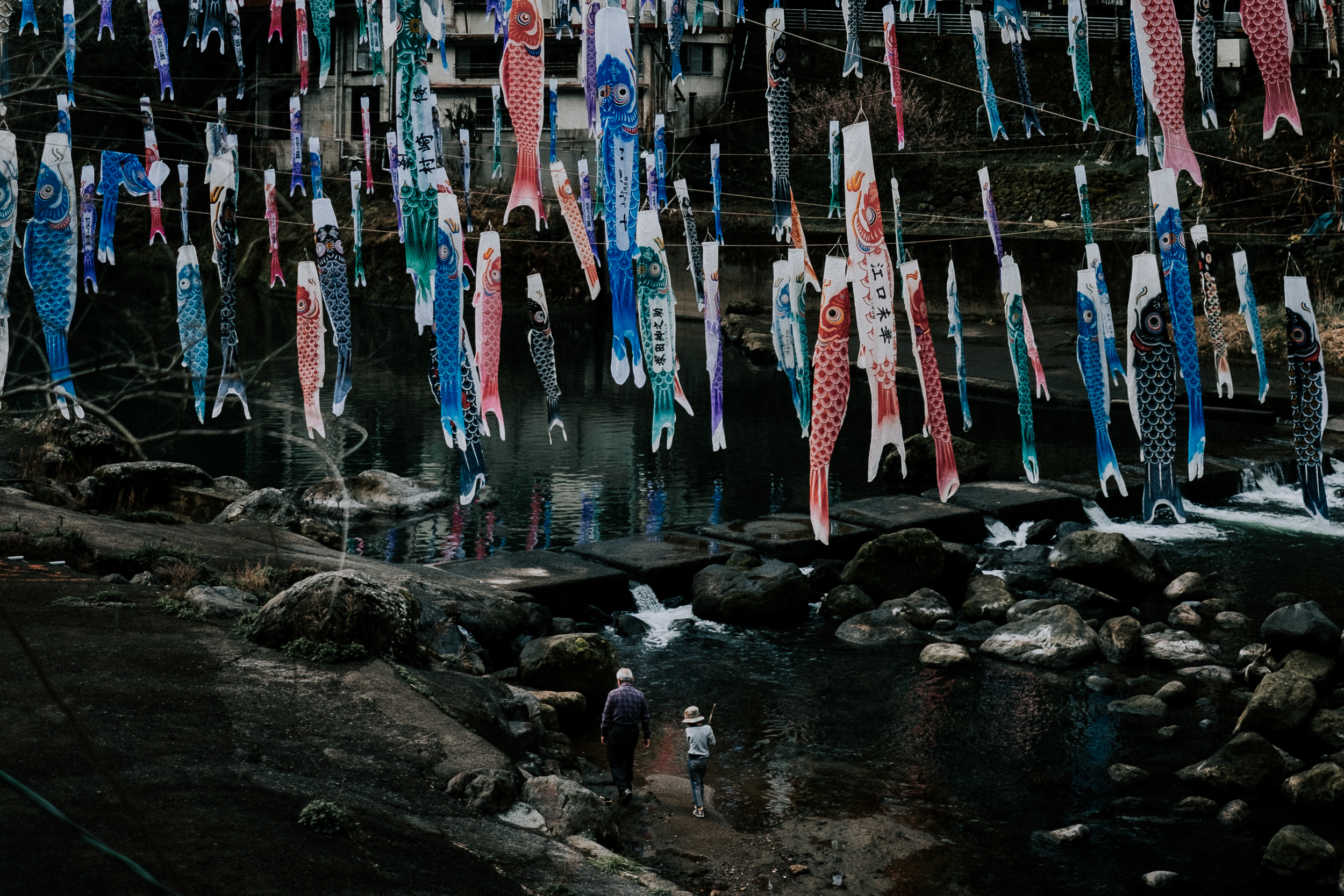 Koinobori in Tsuetate. A boy and his grandfather walk underneath.