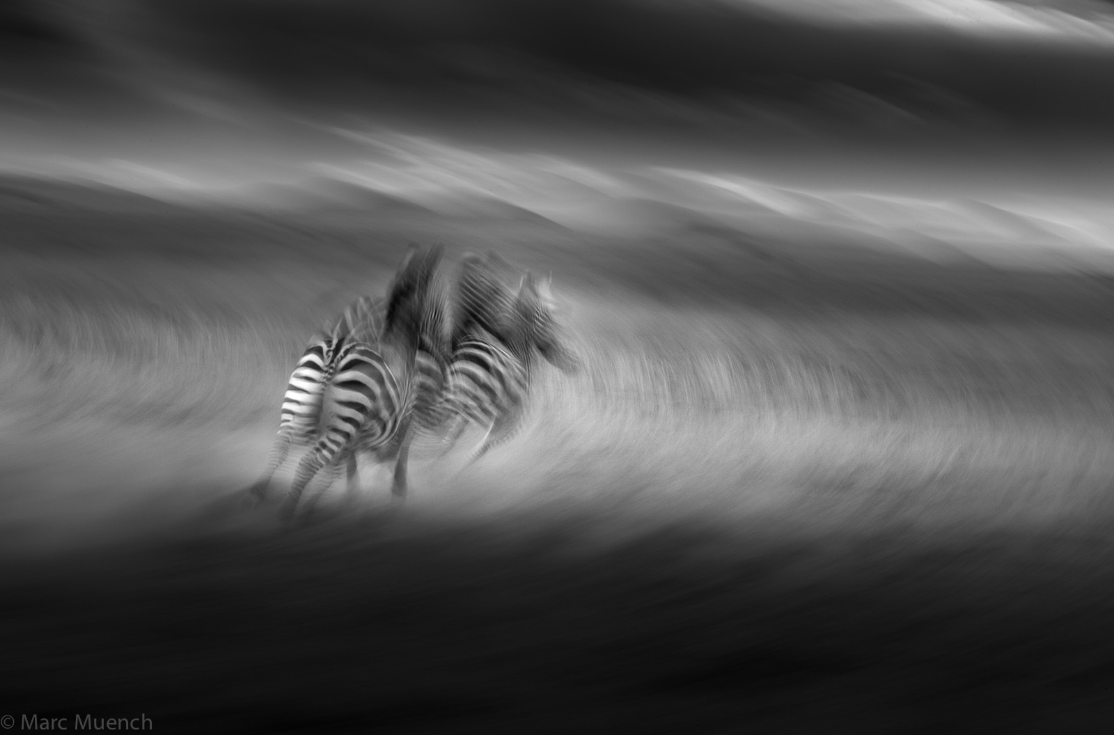 kenya-2359-Edit.jpg